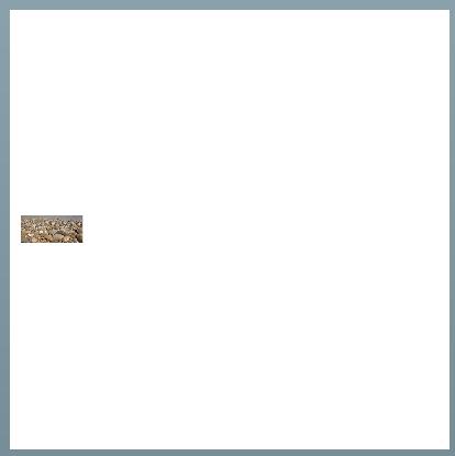 Maintain-aspect-ratio-programmatically1